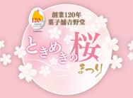 ときめきの桜まつりA3_桜ひよ子_789