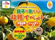 2017_糸島ひよ子農園イベントA4⑥web2