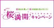 sakuramankai_eye